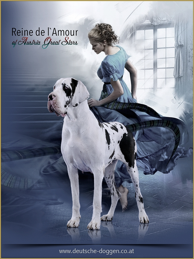 Reine de L'amour of Austria Great Stars