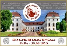 Int.Dogshow PAPA 2020